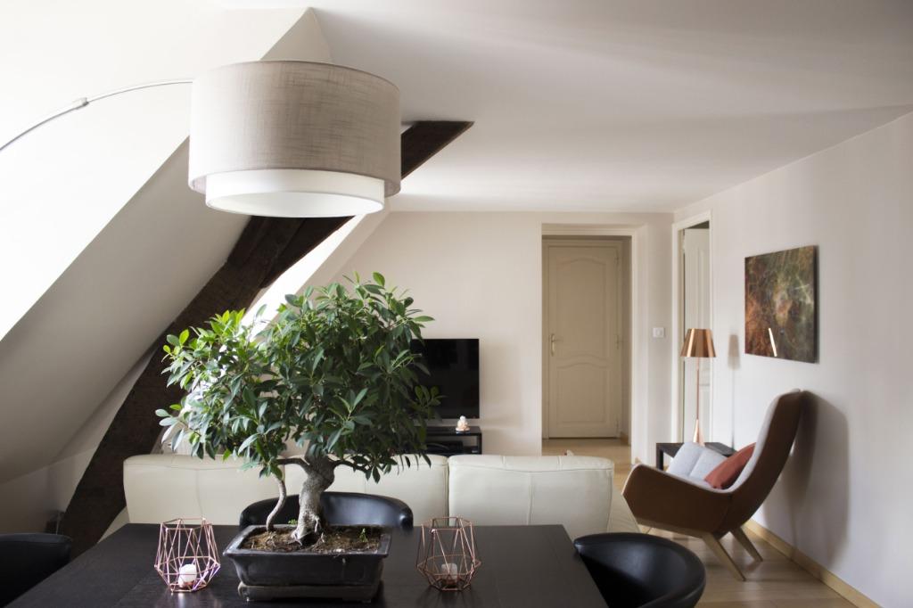 Vente appartement 59000 Lille - Vieux-Lille/Rue Royale Type 3 d'exception