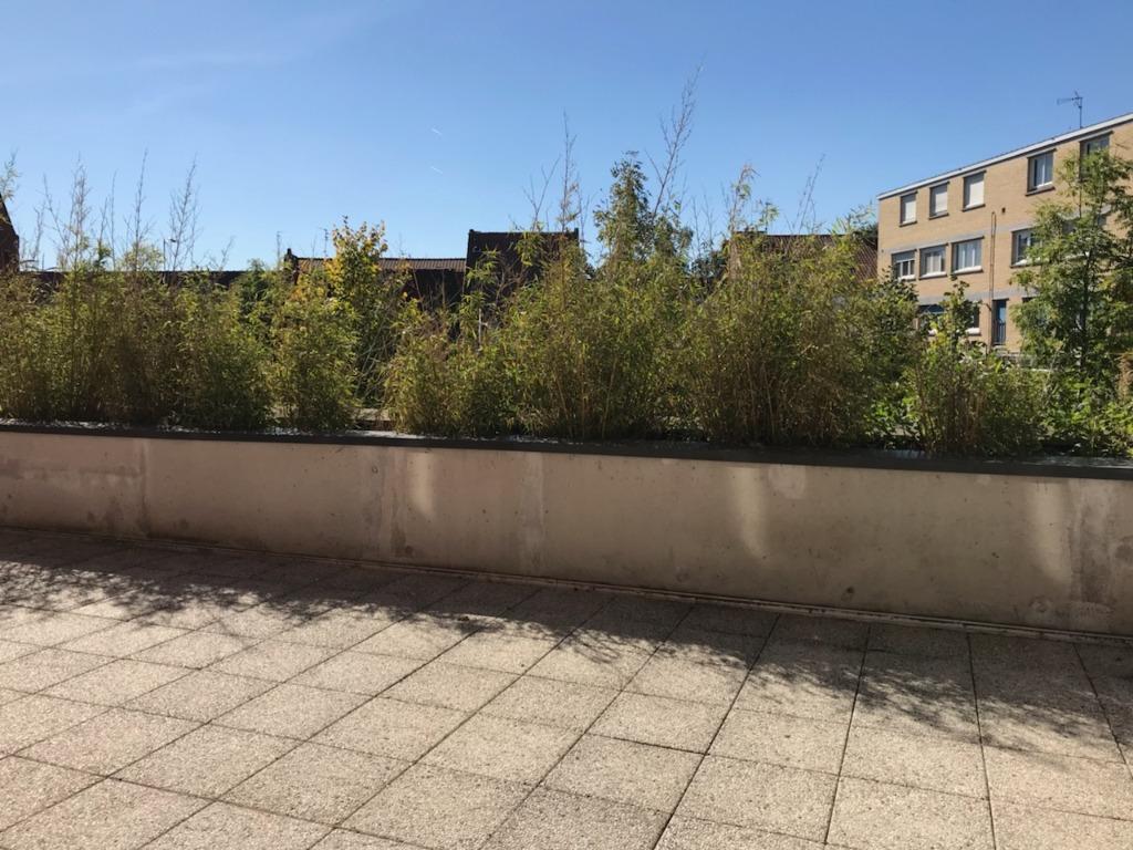 Vente appartement 59700 Marcq en baroeul - Beau T3 avec grande terrasse dans résidence récente